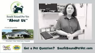 Diane Desselle DVM | Mountain View Veterinary Hospital | Lacey WA
