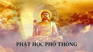 ❤22 tập Phật học phổ thông phần 19❤
