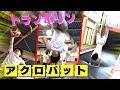 Download Video 東京B少年【Cosmic Melody】トランポランドで飛びまくる! MP4,  Mp3,  Flv, 3GP & WebM gratis