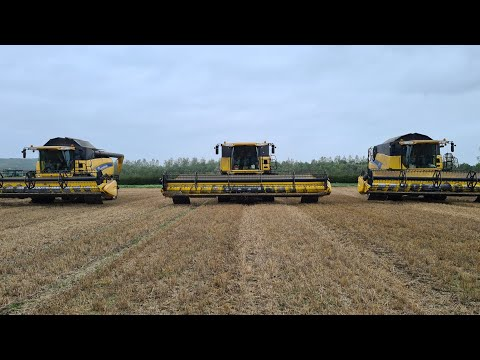3 New Holland Combines Harvesting Wheat Cx8070 Cr9080 Cr9060