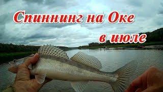 Рыбалка на спиннинг в июле на Оке.