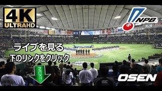 広島東洋カープvs横浜DeNAベイスターズNPB日本プロ野球 ライブストリーム