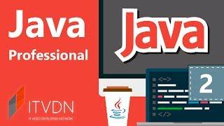 Java Professional. Урок 2. Объектно-ориентированное программирование. Документирование программ