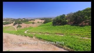 Jessup Cellars & Truchard Vineyard Summer 2016