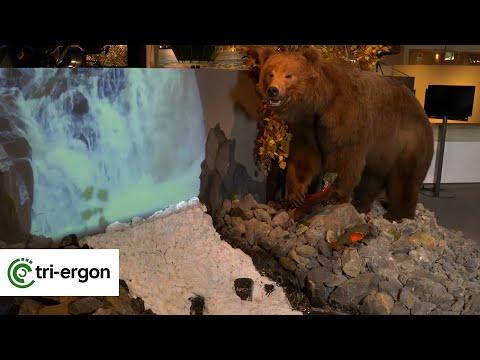Wasser bewegt – Erde Mensch Natur (Ausstellung im LWL-Museum für Naturkunde in Münster, LWL-Kultur)