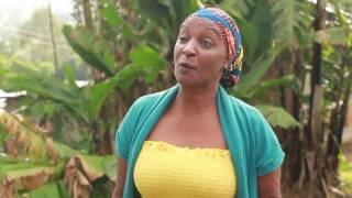Video Mshamba Ep 35 download MP3, 3GP, MP4, WEBM, AVI, FLV September 2018