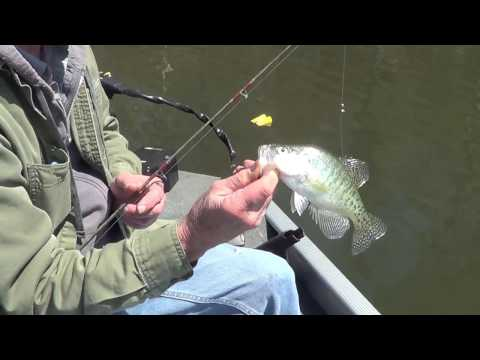 A One Crappie Day ~ Crappie Fishing ~ Patoka Lake ~ Southern Indiana ~ 4-12-2017