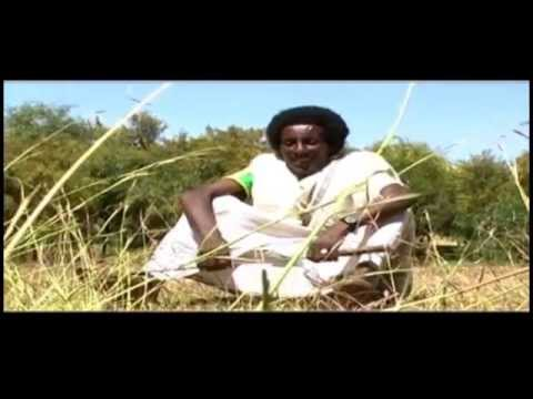 New Ethiopian Tigrigna Raya Traditional Music