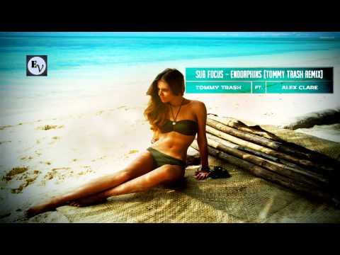 Sub Focus ft Alex Clare - Endorphins (Tommy Trash Remix) mp3
