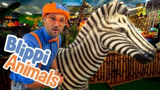 Blippi and Jungle Animals | Explore with BLIPPI!!! | Educational Videos for Toddlers