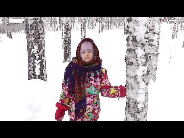 Изображение предпросмотра прочтения – ЕлизаветаЛомова читает отрывок изпроизведения «Снег да снег» А.А.Блока