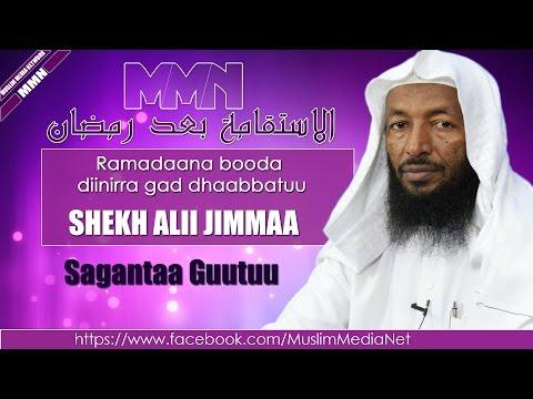 Shekh Ali Jimma, Sabaata (Oromo Dawa)