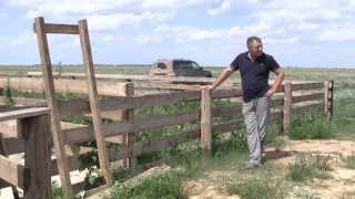 Устройство купки овец Проплывная яма. ООО Волгоград-Эдильбай