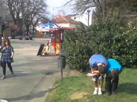 Parkour and Freerunning Vrnjacka Banja 2012