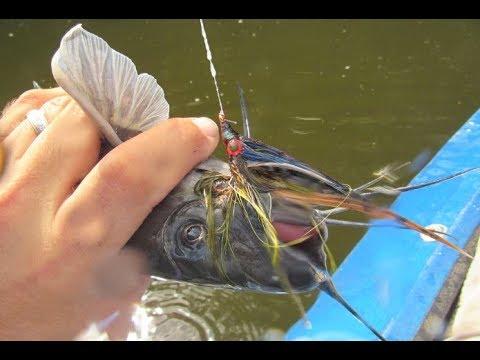 FishTales: Fort Parker State Park