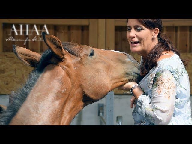 Ausbidlung zum Pferdeunterstützten Coach 25732901