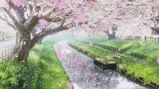 Beautiful Relaxing Music - Healing Sleep Music & Relaxing Piano Music