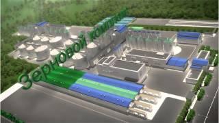 Инновационный агрокомплекс Зеленые листья