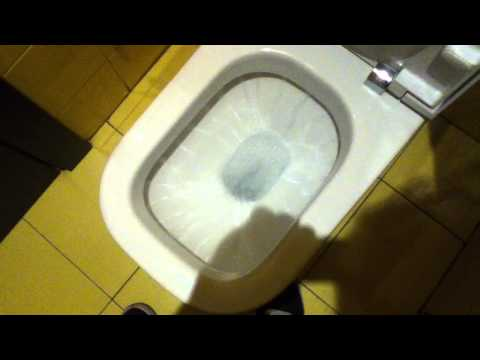 "SPAIN TOILET 3 = ""ROCA The Gap Toilet"""