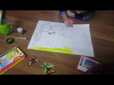 Bim vẽ con ếch