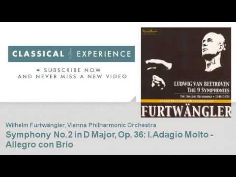 Ludwig Van Beethoven : Symphony No.2 in D Major, Op. 36 : I.Adagio Molto - Allegro con Brio
