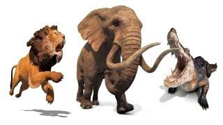 Развивающие мультики для детей.Обучающие.Животные,слон,крокодил,лев и их звуки.Учим вместе