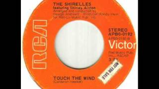 The Shirelles - Touch The Wind.wmv