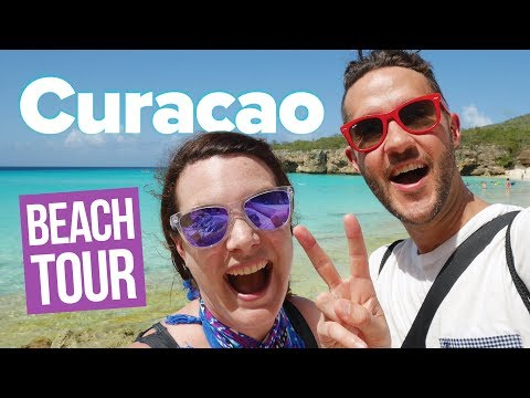 CURACAO ISLAND BEACH TOUR! 🌤🌴 Blue water, beach pigs and cliff jumping.