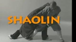 Shi Deyang demonstrates Shaolin Kung Fu fighting techniques
