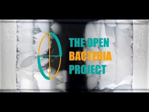 Preparando un cultivo de bacterias || Olivia Marín y Bart Ortiz [Divulgación]