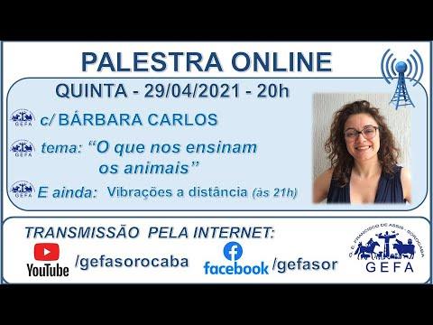 Assista: Palestra online - c/ BÁRBARA CARLOS (29/04/2021)