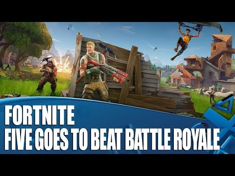 Fortnite - Can We Win In Five Goes?