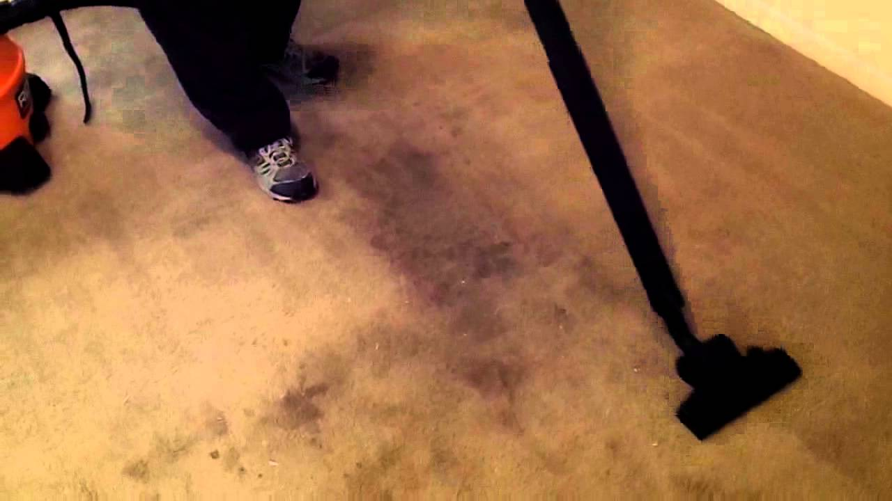 Vacuuming A Trashed Carpet With Ridgid Wd1450 Wet Dry Vacuum And Hard Floor Nozzle You