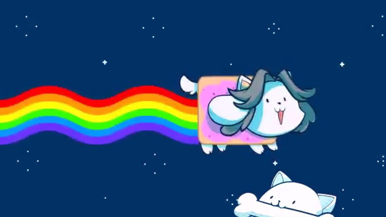 Cute Anime Cat Girl Wallpaper For Computer Nyan Cat Temmie Cover Animation Youtube