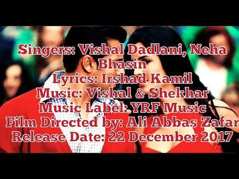 SWAG SE KARENGE SWAGAT (WITH LYRICS)(TIGER JINDA HAIN)-Vishal Dadlani & Neha Bhasin