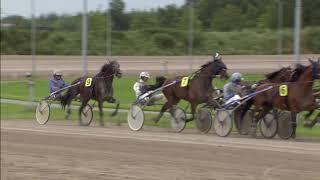 Vidéo de la course PMU PRIX YEARLINGSALE.NL