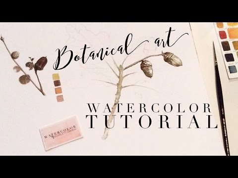 How to use Watercolor, Full Botanical Art Tutorial: How to B