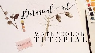 How to use Watercolor: Underpainting Full Botanical Art Tutorial