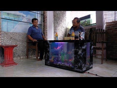Kreasi Aquarium Meja Hemat Listrik-Aquarium Electricity Save Table