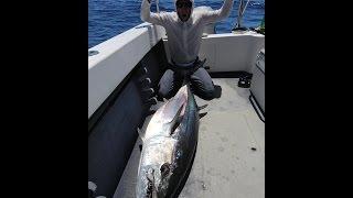 Ловля собакозубого тунца.