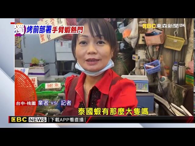 「蝦界姚明」手臂蝦 驚人「爆膏」鮮美四溢@東森新聞 CH51