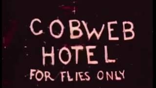 Color Classic: Cobweb Hotel (1936)