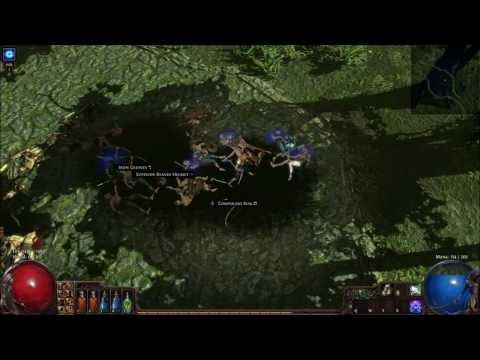 Path Of Exile Witch Build German Hardcore