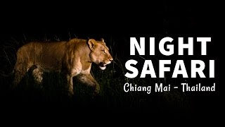 Chiang Mai Night Safari - What an INCREDIBLE EXPERIENCE!