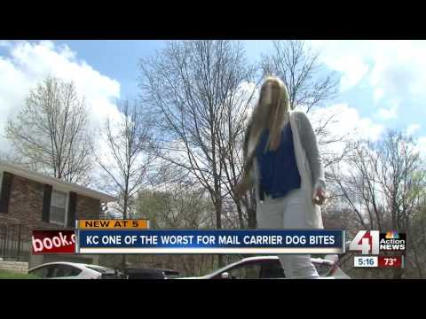 USPS: KC ranks among top 'dog attack cities'