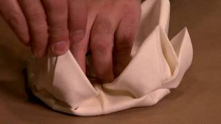 Napkin Folding Demonstration - At high speed