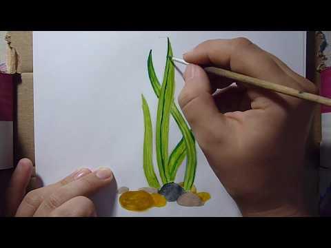 Как нарисовать водоросли карандашом поэтапно для начинающих