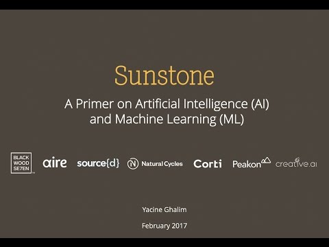 A primer on Artificial Intelligence (AI) and Machine Learning (ML) + Sunstone's investment thesis