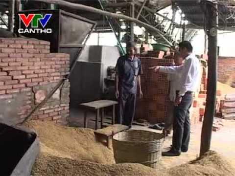 Đầu tư máy sấy lúa ở Đồng bằng sông Cửu Long bcnn
