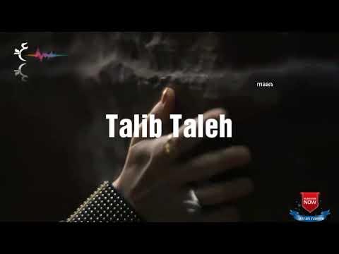 Talib Taleh ağıl yoxsa ürək
